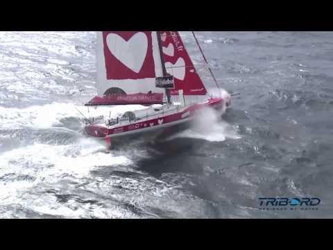 Tanguy De Lamotte : Le Cap Leeuwin