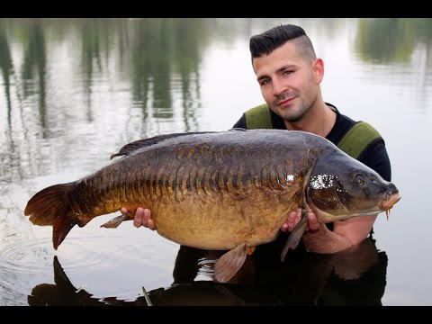 Carp fishing Farlows lake ( Day Ticket Diaries part 4 )