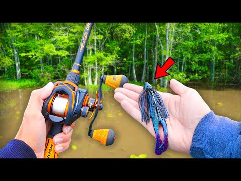 Searching For GIANT Bass W/ BIG Jigs! (Bank Fishing)