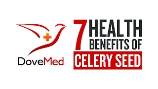 7 Health Benefits Of Celery Seeds
