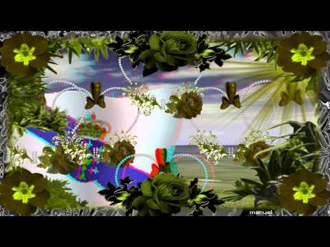 CANTAME UN PASODOBLE GALEGO  3D  HD mpg
