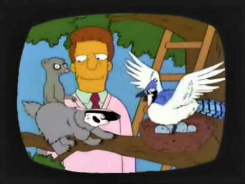 """Troy McClure - """"Man vs. Nature: The Road to Victory"""""""