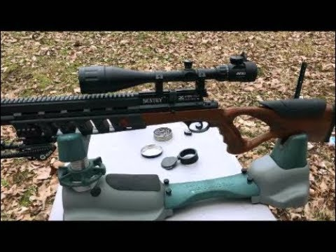 PCP Air Rifle On A Budget ( Xisico Sentry )