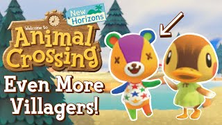 Animal Crossing New Horizons | 30+ New Villager Renders 🐻✨