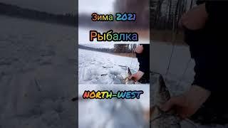 Зимняя рыбалка shorts