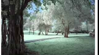 Oru Chempaneer - Unnimenon_2003