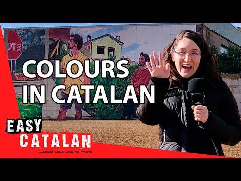 Tiếng Catalan bài 3: Màu sắc