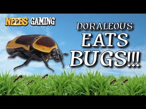 Doraleous Eats Bugs! - Bug Festival
