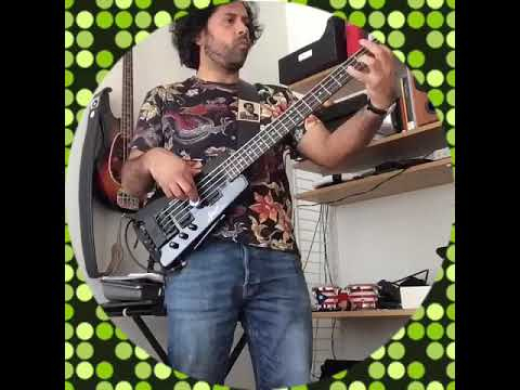 Steinberger Spirit Bass With Passive Bartolini Pickups & La Bella Flatwound Strings