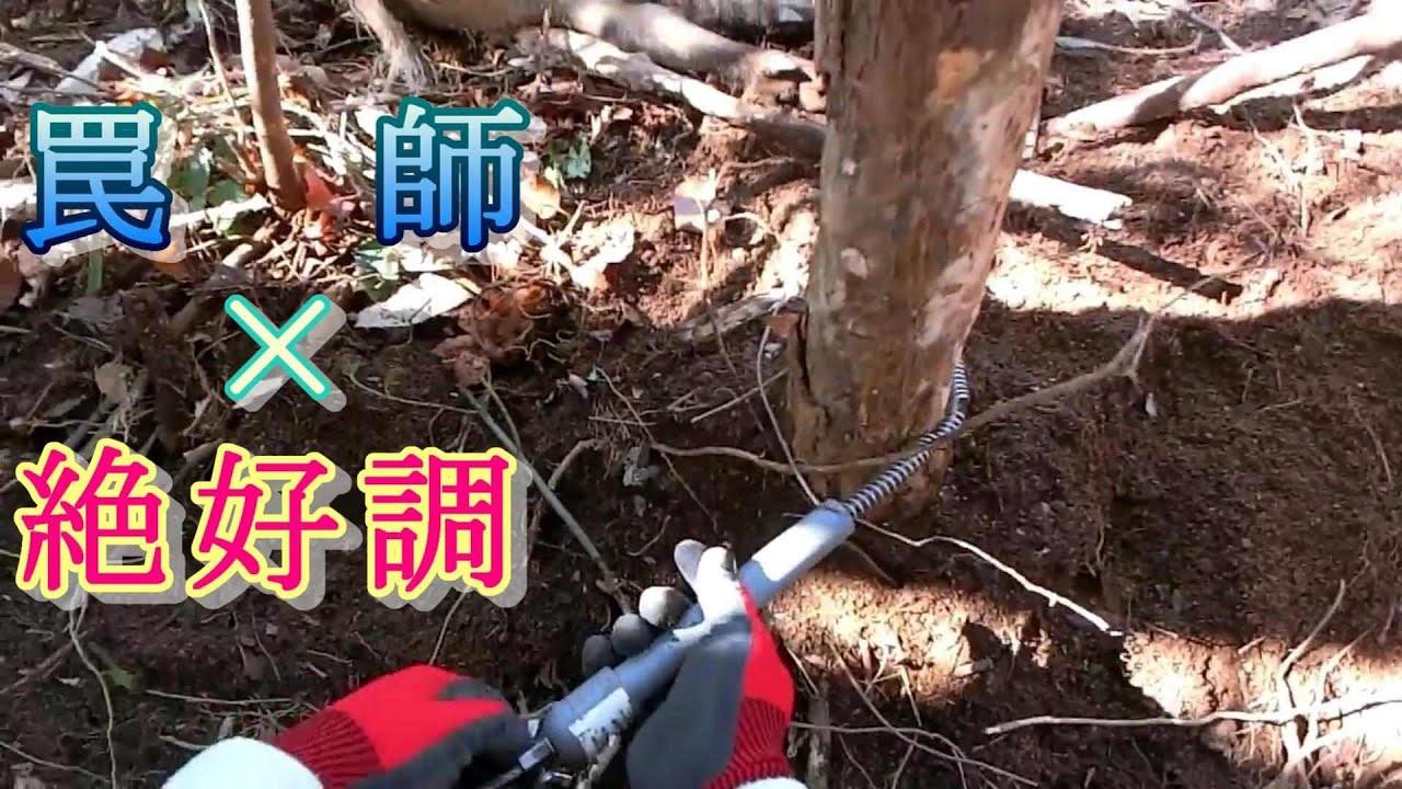 【狩猟season1】(再)☆絶好調☆現地指導の成果