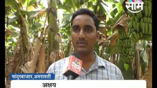 Akshay Deshmukh's banana farming success story