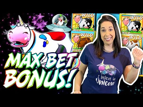 UNICOW After UNICOW After UNICOW // SLOT QUEEN Moolah Madness !