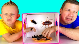 Martin Play Learning About Insects with Mystery Box Toy Challenge Pretend Play