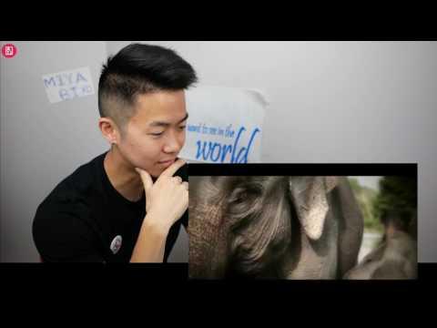 Japanese React To TULUS - Gajah