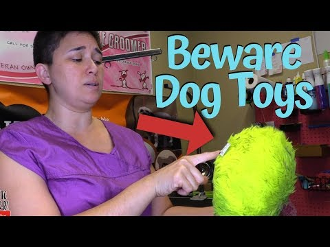 beware-dog-toys-and-treats
