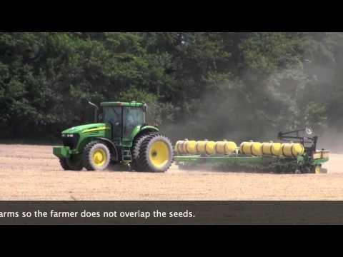 Delaware Farm Bureau: Lima Beans