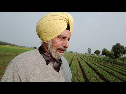 Part 2- Zero Budget Farming - Natural Organic Farming - 2.5 Times More Profit
