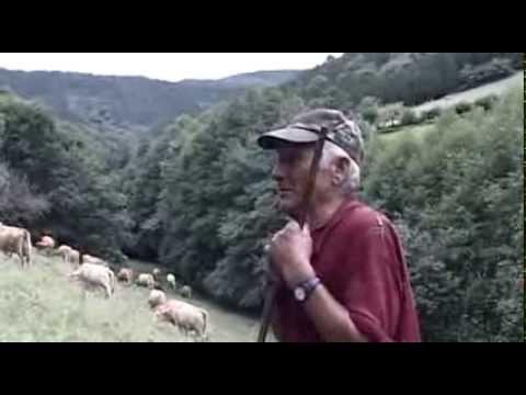 galicia,-el-origen-(documental-subtitulado)