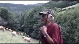Galicia, El Origen (Documental subtitulado)