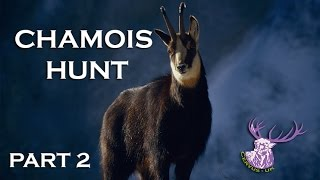 HUNTING CHAMOIS IN THE ALPS!