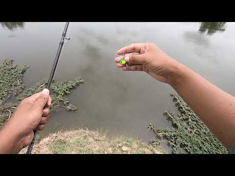 [zom รีวิว 2 ] สปูลตื้นแต่งรอก Abu Max Stx Gen4