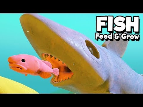 Feed and Grow Fish Gameplay German - Ghost Shark Attack