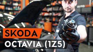 Regardez le vidéo manuel sur la façon de remplacer SKODA OCTAVIA Combi (1Z5) Filtre climatisation