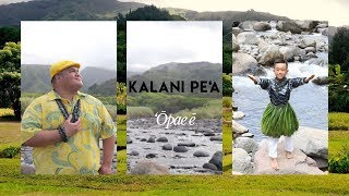 Kalani Peʻa- ʻŌpae Ē (Opae e) - OFFICIAL MUSIC VIDEO