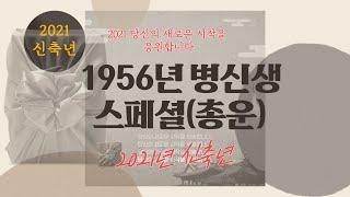 1956년생 병신생 스페셜(2021년 신축년 총운및 보충)