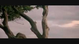 Aphex Twin - Polynomial C