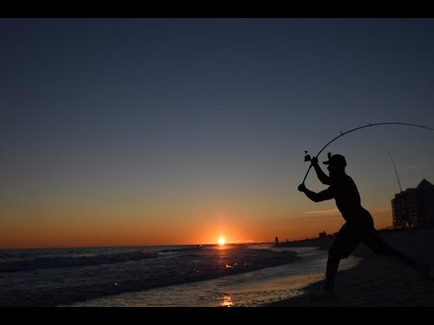 Best Surf Rods For Surf Fishing