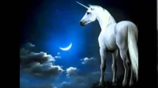 Rama Y Su Combo (Canta Silvina)- No Insistas Mas Por Favor