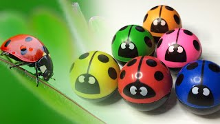 Ladybug Bouncy Ball Spiral Machine... Fun Time With Toys Wonderland