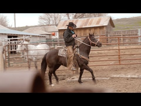 Rodeo Cold Beer - Official Video