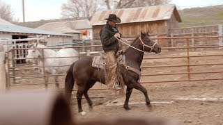 Download Rodeo Cold Beer - Official MP3 song and Music Video