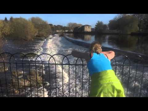 Salmon Leap In Otley