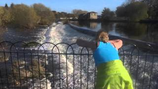 Salmon leap in Otley