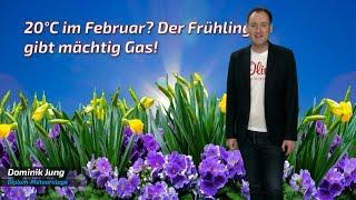 Fällt schon im Februar die 20-Grad-Marke? Der Frühling dreht voll auf! ☀️🌷 (Mod.: Dominik Jung)