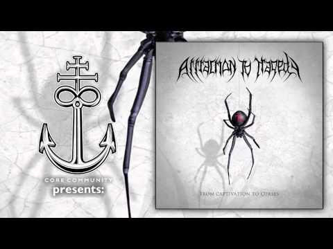 Attraction To Tragedy - Vendetta