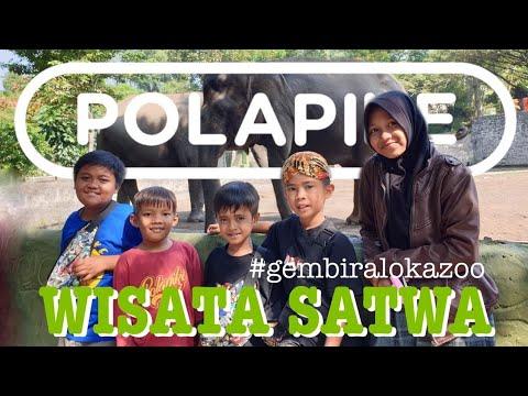 wisata-satwa-#polapike-(film-pendek-ngapak-kebumen)