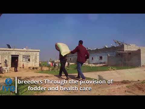 Support cattle breeders project