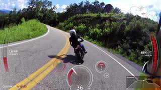 Tail of the Dragon run - Honda Groms, Kawi z125, and Benelli TNT 135s