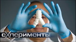 Пластики: мифы и реальность | ЕХперименты с Антоном Войцеховским
