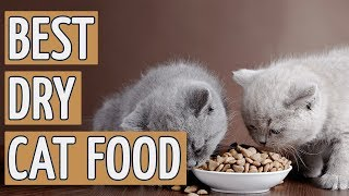 ⭐️ Best Dry Cat Food: TOP 9 Dry Cat Foods of 2018 ⭐️