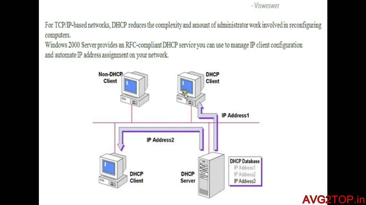 Dhcp Dora Process Youtube