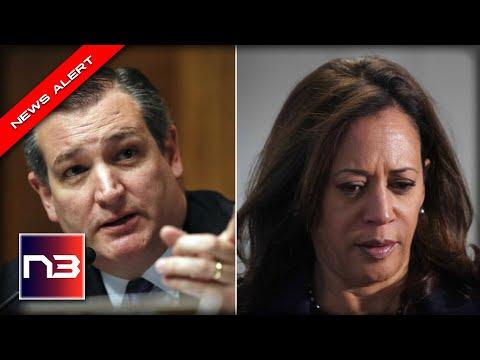 Kamala Harris Tries to Cover Up Border Crisis - Ted Cruz IMMEDIATELY Shuts her Down