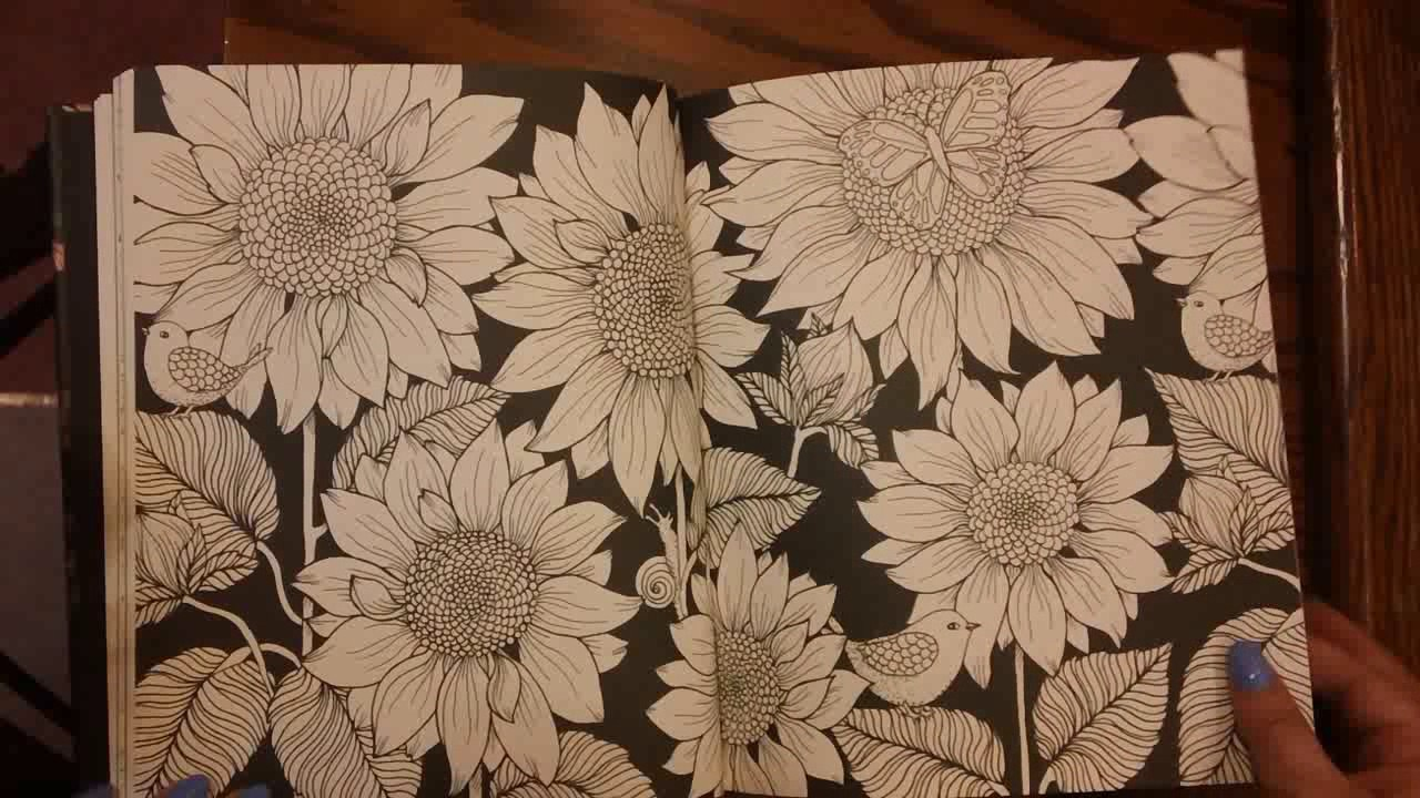 Review and Flipthrough of Twilight Garden Coloring Book by Maria ...