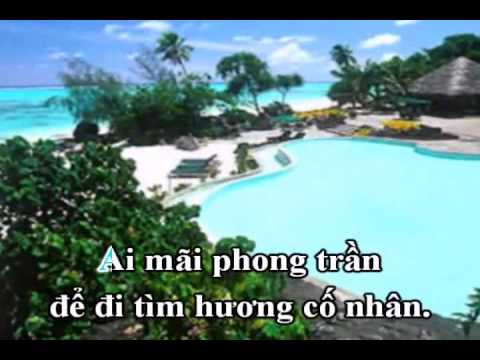 Tan Co - Quan Nua Khuya - Tieng Hat Chieu Linh.avi