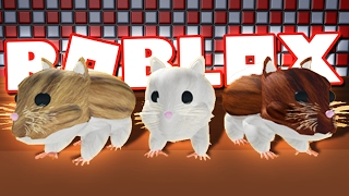 BECOMING HAMSTERS IN ROBLOX!
