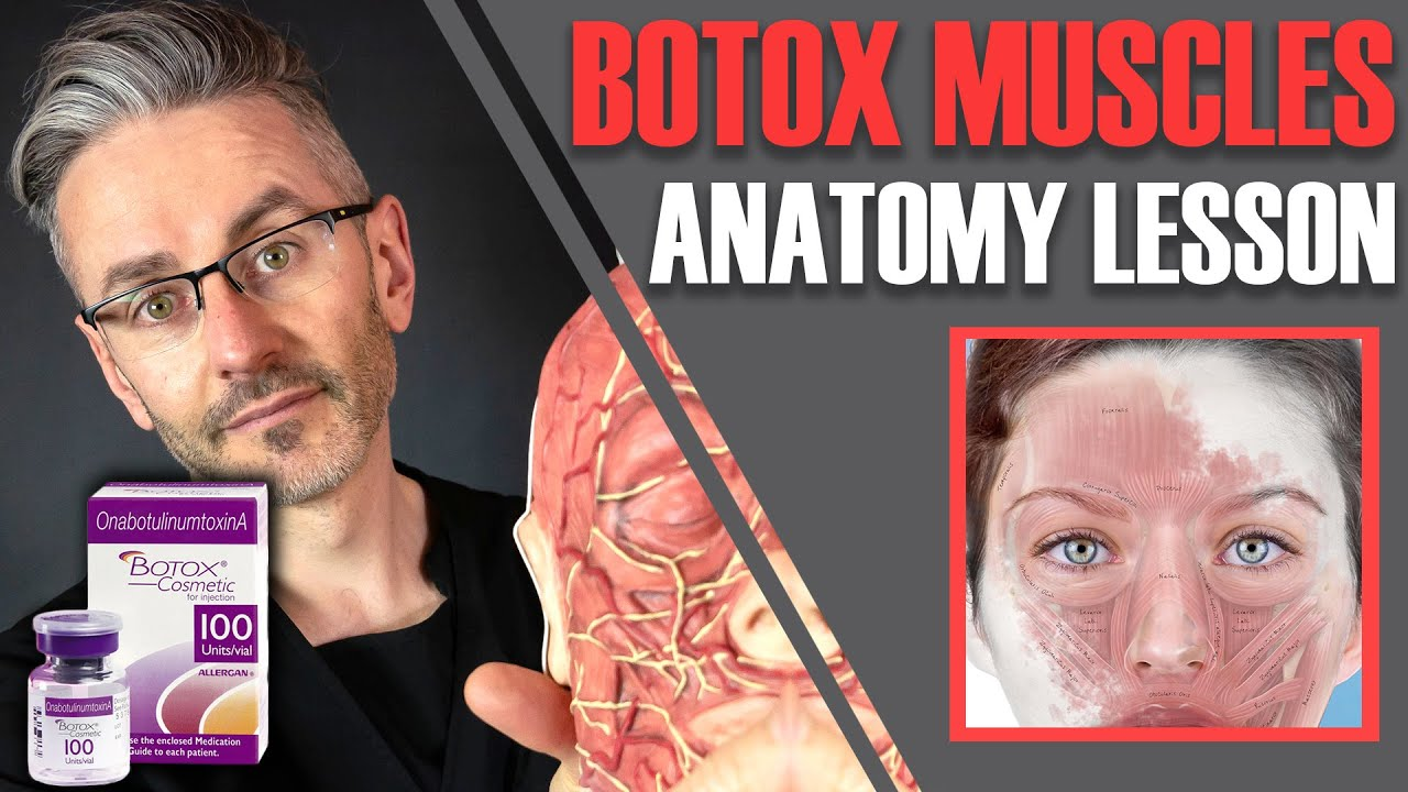MUSCLE ANATOMY: How to avoid side effects & maximise Botox efficiency [Aesthetics Mastery Show]